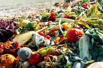 فيديو.. إهدار 184 كجم من الطعام سنوياً على مستوى الفرد في المملكة - المواطن