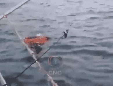 صورة امرأة حية وسط البحر بعد عامين من اختفائها