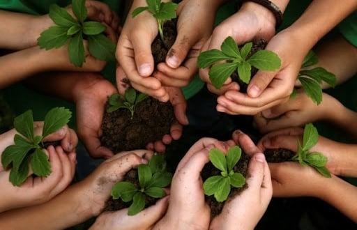 ما هو مفهوم العلاقة بين الإنسان والبيئة
