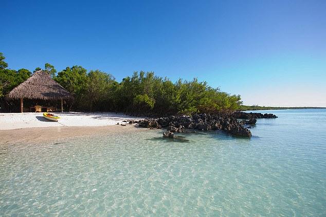 الغاز والياقوت هذا ما تريده داعش من جزر الفردوس في موزمبيق