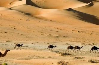 خصائص البيئة الصحراوية للصف السادس