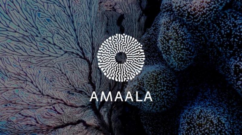 كيف سيغير مشروع أمالا مفهوم السياحة ؟