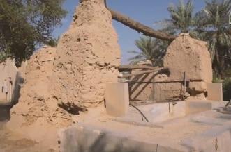 فيديو.. قصة مقولة الملك عبدالعزيز: تلقوني عند شجرة آل صفيان - المواطن