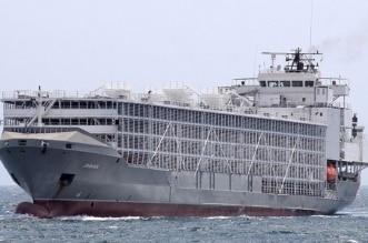 غرق سفينة تجارية إماراتية مقابل المياه البحرية اليابانية - المواطن