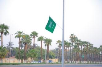 شاهد .. طرقات وشوارع جدة تتزين بأعلام الوطن والإضاءات الخضراء - المواطن