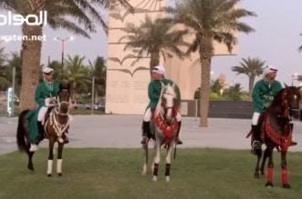 شاهد.. مسيرة بالخيول في جدة احتفاء باليوم الوطني الـ 90 - المواطن