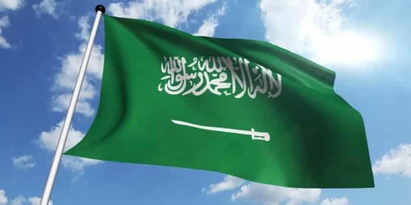 بالشهادتين والسيف العدل.. قصة العَلَم السعودي الذي لا يُنكس - المواطن