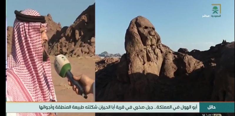مجسم جبلي في حائل يشبه أبو الهول وباحث يكشف التفاصيل
