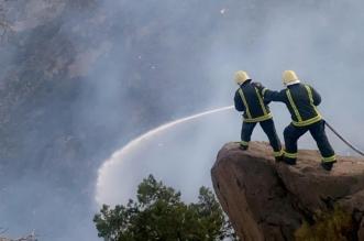 استمرار مكافحة حريق تنومة وعزله عن المواقع المأهولة بالسكان - المواطن