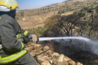 الدفاع المدني يخمد حريقًا في مدرجات زراعية بأبها