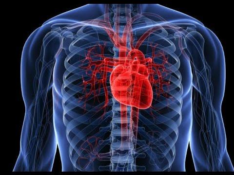كيفية تشخيص الألم في وسط القفص الصدري