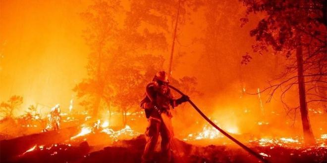 صورة إخماد 70% من مساحة حريق تنومة