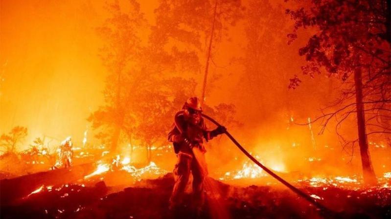 إخماد 70% من مساحة حريق تنومة