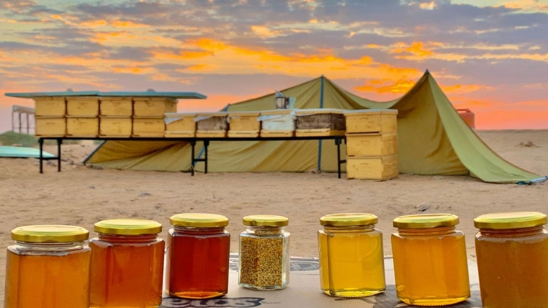 غدًا.. انطلاق مهرجان أيام العسل في الجوف