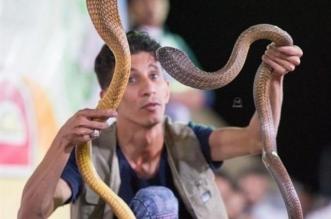 فيديو.. شاب بمكة يروى قصة احترافه صيد الثعابين السامة - المواطن