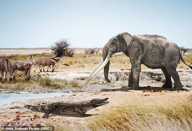 تماسيح قديمة سبحت من إفريقيا إلى إسبانيا وعاشت بالأندلس منذ 5 ملايين عام 