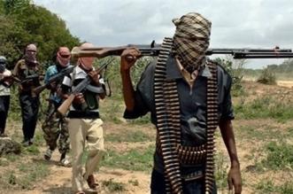 ماعت تحذر من تفشي الإرهاب الداعشي في موزمبيق - المواطن