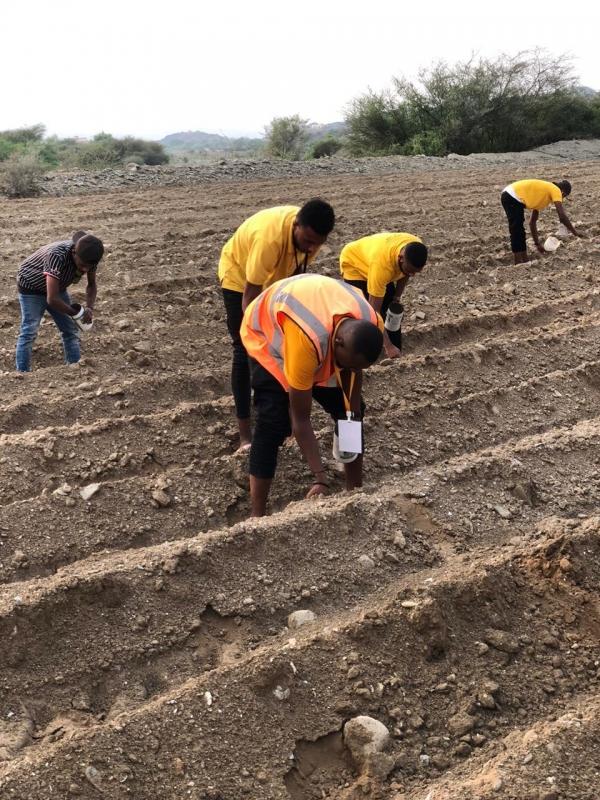 مزرعة الدارسي بعسير انطلاقة لمبادرة نأكل ما نزرع - المواطن