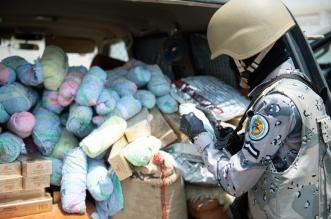 حرس الحدود يحبط تهريب 2.5 طن من القات بجازان