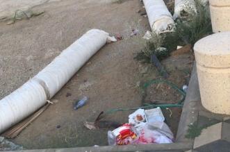 حديقة المحمدية بجازان تشكو الإهمال والروائح الكريهة - المواطن