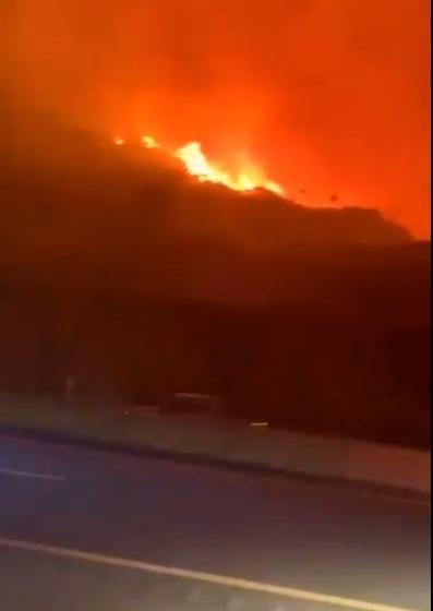 فيديو.. تفاصيل وتطورات حريق غابة جبل غُلامة بقرية الظهارة
