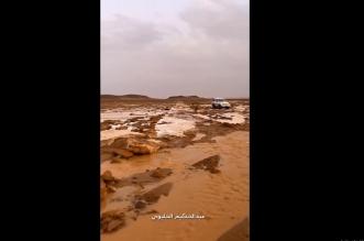فيديو.. أكوام هائلة من البرد وأجواء ولا بالخيال في دومة الجندل - المواطن