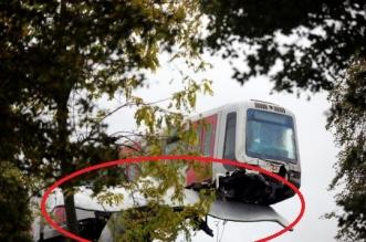 فيديو مدهش.. قطار ينجو من كارثة بسبب ذيل حوت عملاق !