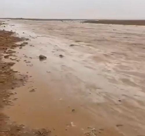شاهد.. جريان سيول رفحاء في رابع أيام سقيا