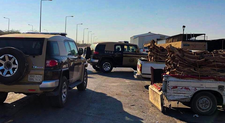 ضبط 10 مخالفين بحوزتهم 12,5 طن من الحطب المحلي في الرياض