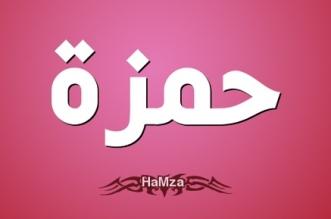 معنى اسم حمزة