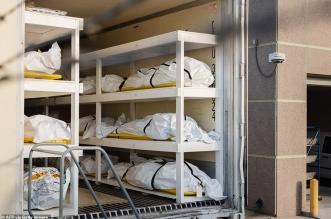 ولاية تكساس تستخدم شاحنات اللحوم كمشرحة لجثث مرضى كورونا!