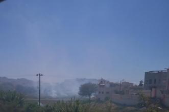 مزارعو عسير يواجهون أسراب الجراد بإشعال النيران بالمزارع - المواطن