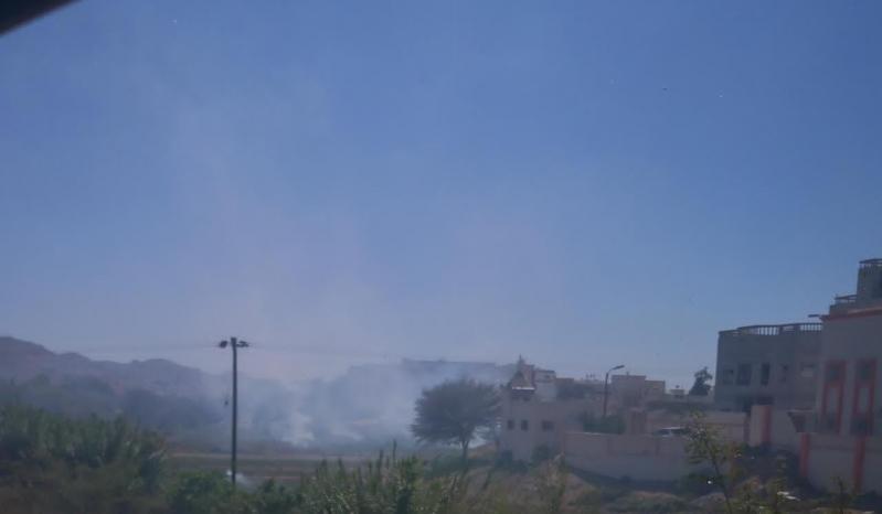 مزارعو عسير يواجهون أسراب الجراد بإشعال النيران بالمزارع
