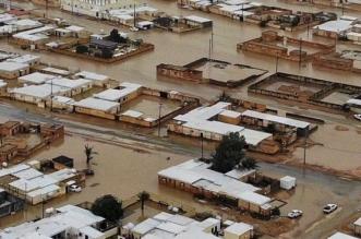 الأمطار تحول هجرة الصفيري في حفر الباطن إلى بحيرة - المواطن