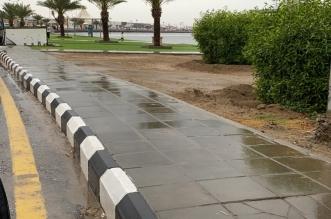 تنبيه من أمطار متوسطة إلى غزيرة على القنفذة والليث - المواطن