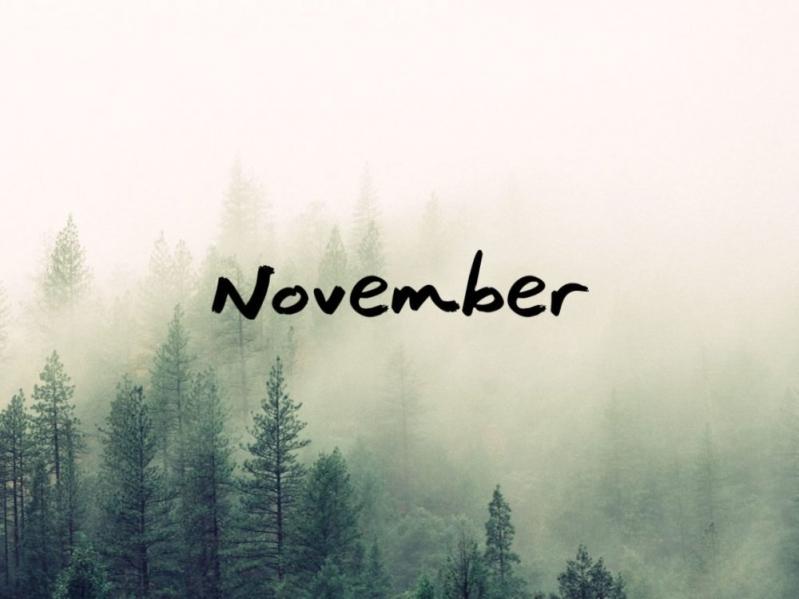 تخفيضات نوفمبر sweet november وموعد الجمعة البيضاء