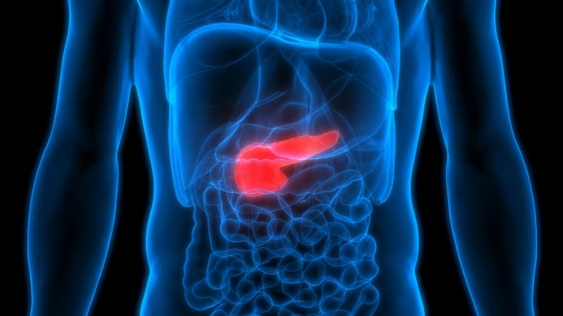 الثوم يتصدر قائمة الأطعمة المفيدة للبنكرياس