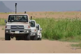 البيئة تتصدى للجراد الصحراوي بالمكافحة الجوية والأرضية في القنفذة - المواطن