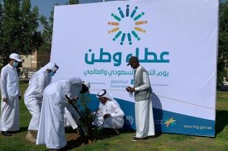 مبادرات متنوعة في عسير بمشاركة قرابة 1200 متطوع - المواطن