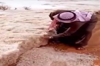 فيديو.. بردية سُمكها 40 سم تغطي الأرض شمال السعودية - المواطن