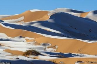 الثلوج في السعودية