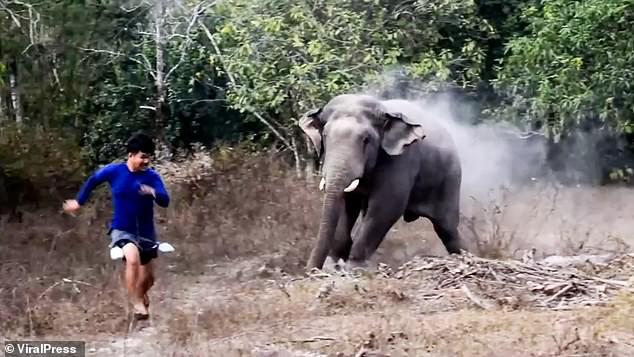 فيل بري