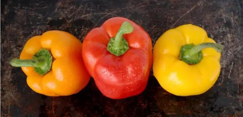 5 أطعمة تساعد على حماية البشرة من الشمس (4)