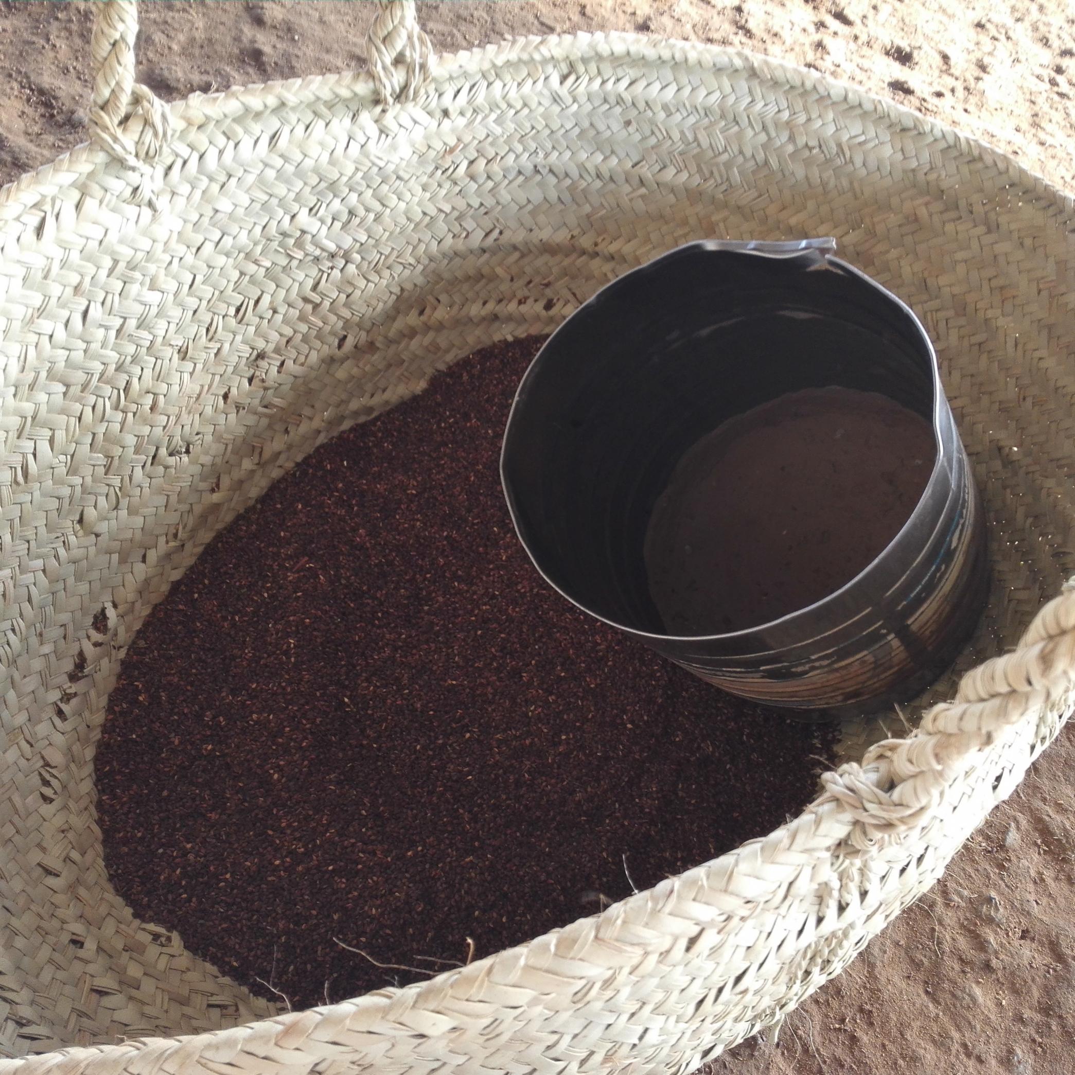 طريقة زراعة السمسم في جازان.. أنواعه ومراحل استخراج زيت السليط - المواطن