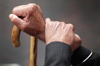 نظام حقوق كبير السن