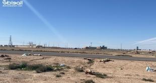 مردم ونفايات يزاحمان طريق جامعة حفر الباطن