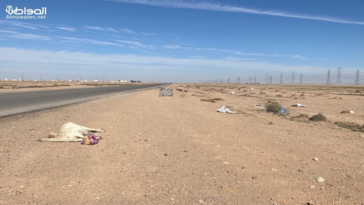 النفايات تزاحم طريق جامعة حفرالباطن