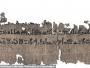 اكتشاف بردية طبية مصرية عمرها 3500