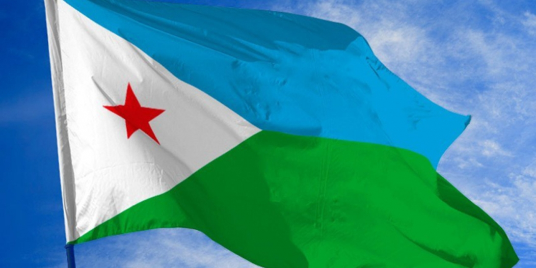 جيبوتي : مبادرتا السعودية الخضراء والشرق الأوسط الأخضر تسهمان بمواجهة التغير المناخي