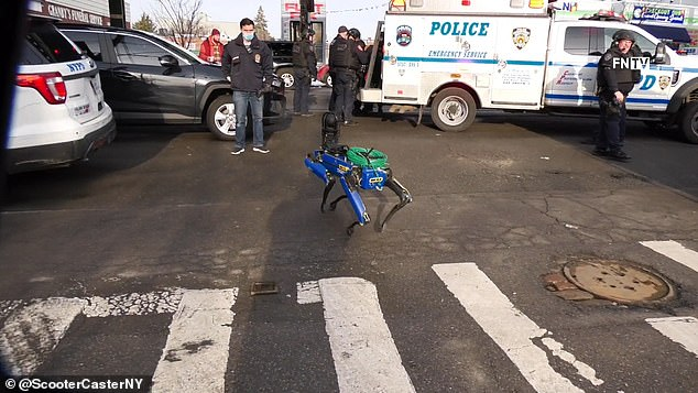 صور وفيديو .. Digidog الكلب الآلي الذي يحارب المجرمين